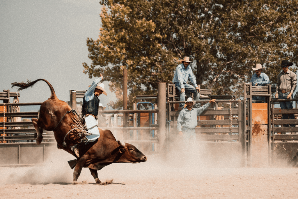 Cowboy Church Rodeo Career Story